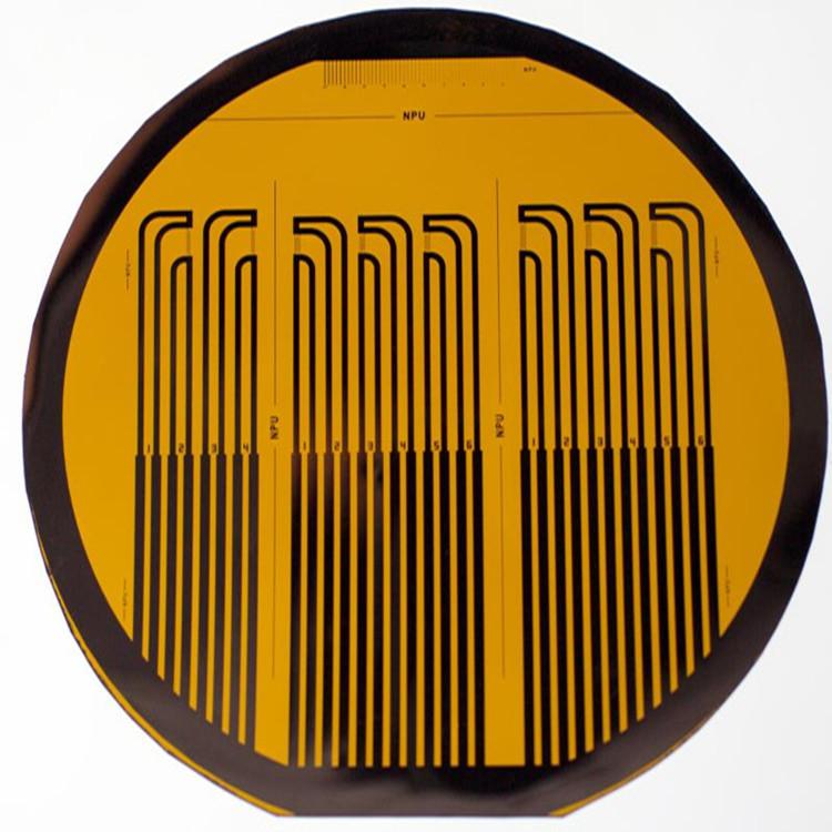 柔性热膜剪应力传感器阵列。.JPG